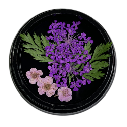 Purple - Dried Flower