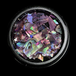 Magpie Shells - Purple