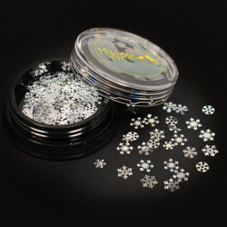 Snowflakes Slices - Silver